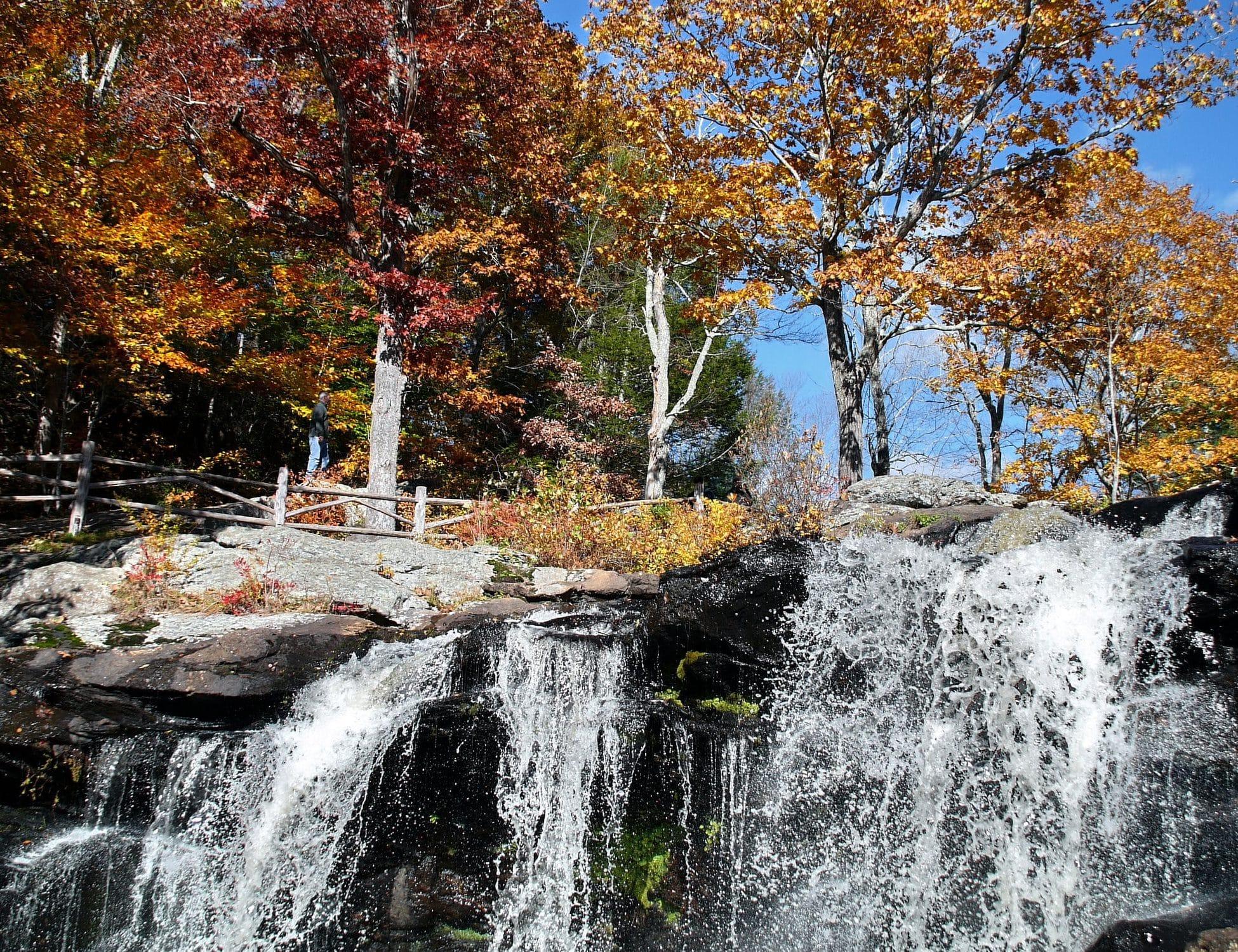 Путешествуем по США: чудеса природы в каждом из штатов (часть 1) рис 7