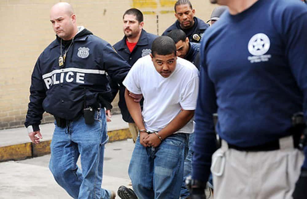 Колонки: Банды Нью-Йорка   «Тринитарио» — империя ненависти