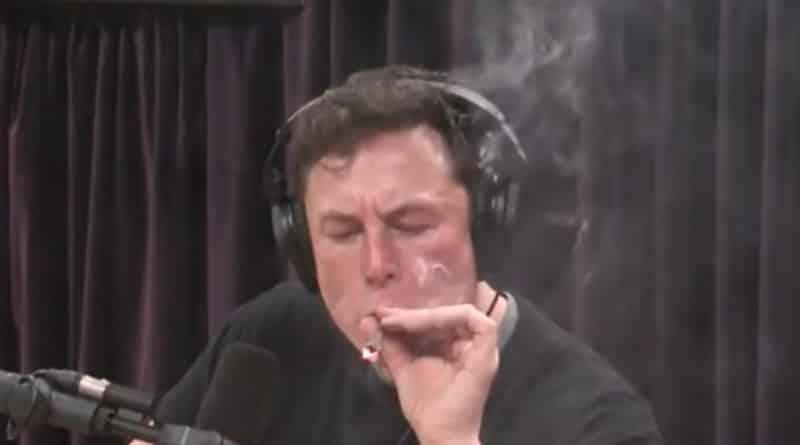илон маск марихуана